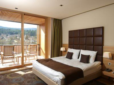 Hotel Balnea 4*, Dolenjske Toplice, Slovenija